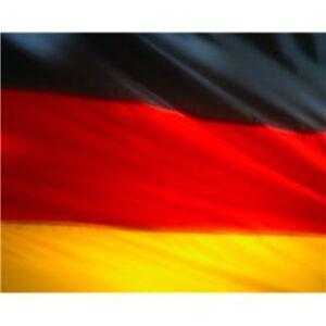 Servicio de traducciones alemán inglés